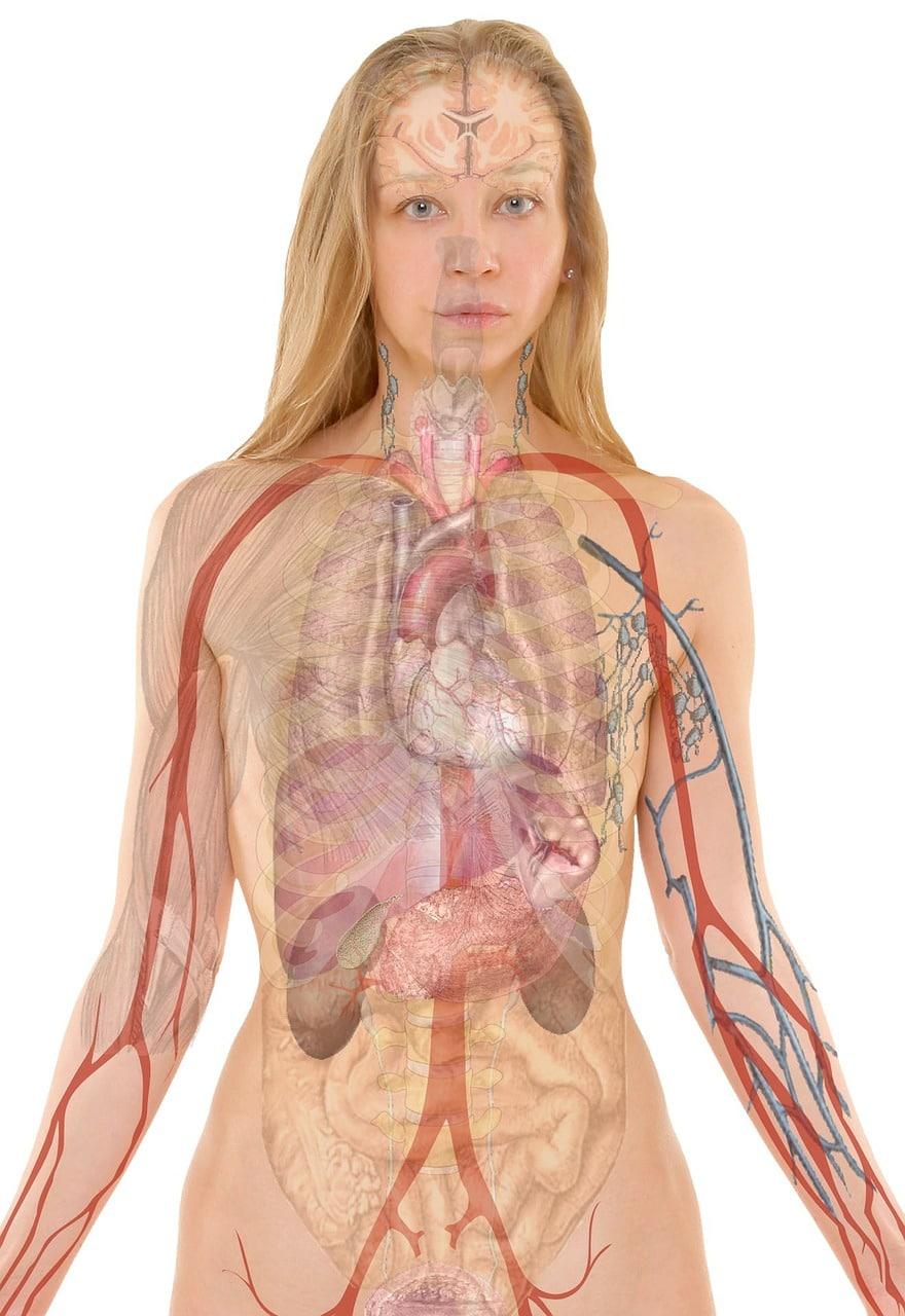 Telesni proces MTVSS™ (sistem odstranjevanja končne molekularne vezljivosti)